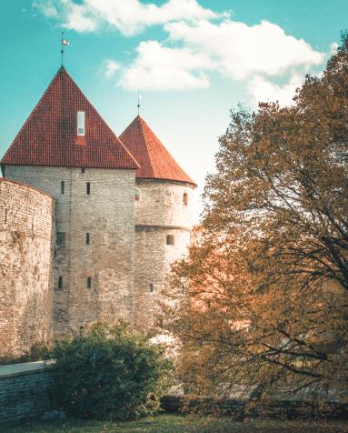 Регистрация ООО для резидентов Эстонии